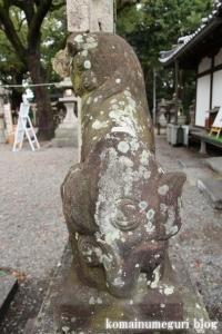 泉穴師神社(泉大津市豊中町)43