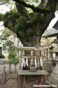 羽衣浜神社(高石市羽衣)7