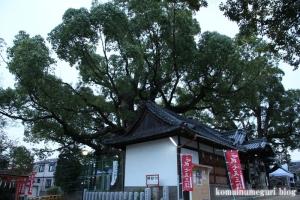 鋸尾八幡神社(堺市西区津久野町)15