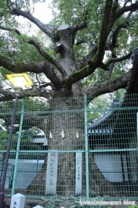 鋸尾八幡神社(堺市西区津久野町)10