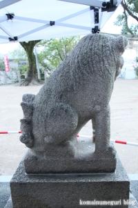 鋸尾八幡神社(堺市西区津久野町)18