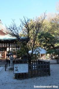 白峰神宮(上京区飛鳥井町)6