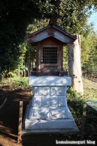 附島氷川女体神社(さいたま市緑区大間木)7
