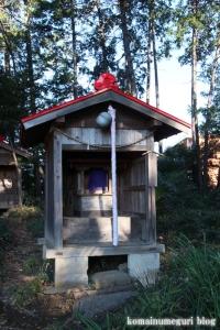 氷川神社(川口市柳崎)9