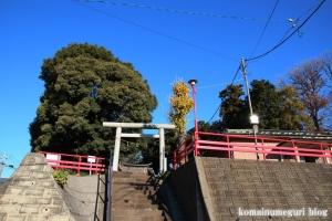 氷川神社(川口市柳崎)1