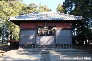 大谷口氷川神社(さいたま市南区大谷口)7