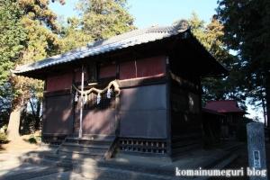 大谷口氷川神社(さいたま市南区大谷口)9