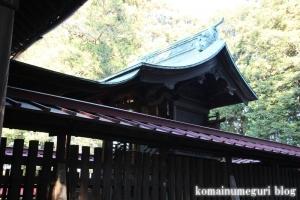 大谷口氷川神社(さいたま市南区大谷口)10