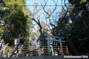 氷川神社(さいたま市南区太田窪)1