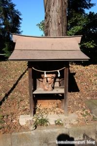 鶴ケ丸八幡神社(川口市芝)16