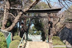 鶴ケ丸八幡神社(川口市芝)7