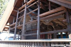 鶴ケ丸八幡神社(川口市芝)14