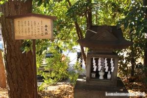 氷川神社(川口市青木)31