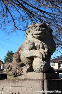 氷川神社(川口市青木)14