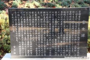 川口神社(川口市青木)13