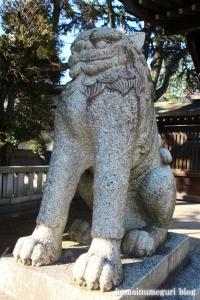 川口神社(川口市青木)8