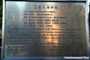 上宮大澤神社(小金井市貫井南町)4