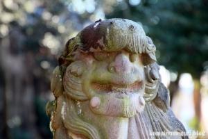 姫宮神社(南埼玉郡宮代町姫宮)32
