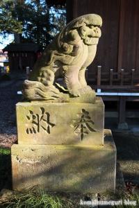 姫宮神社(南埼玉郡宮代町姫宮)28