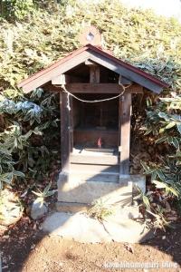 五社神社(南埼玉郡宮代町東)18