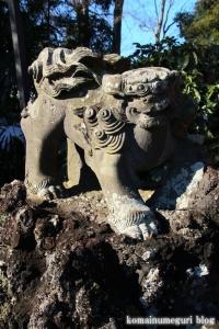 五社神社(南埼玉郡宮代町東)24