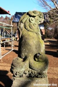 五社神社(南埼玉郡宮代町東)34