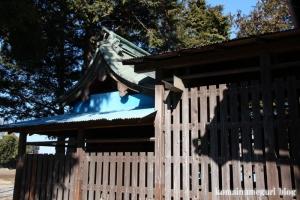 八坂神社(北葛飾郡杉戸町大塚)9