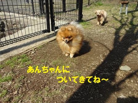 20160302094618920.jpg
