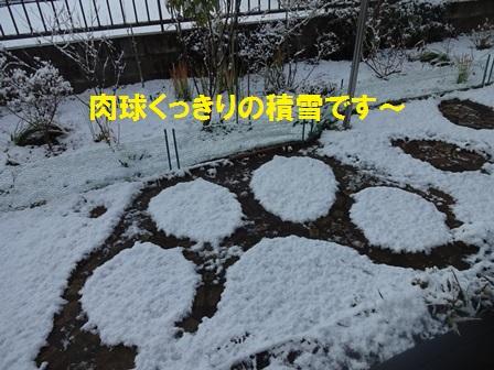 2016030413020705e.jpg