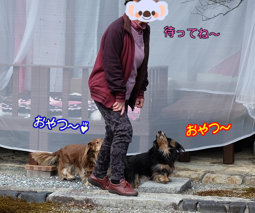 20160224221957b2a.png
