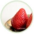苺、いちご、イチゴといろいろな小皿