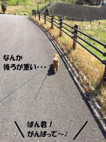 20160322173430ff9.jpg