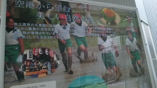 fujinokuni-3-500.jpg