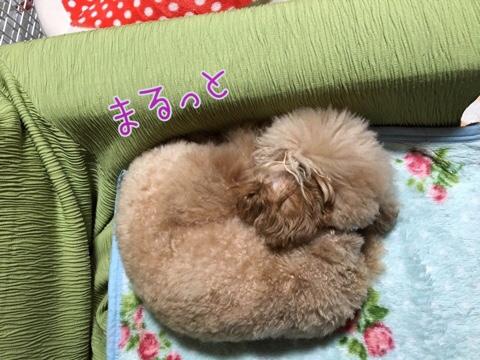 fc2blog_201603222123184d4.jpg