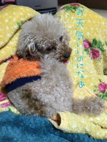 fc2blog_20160327211255cab.jpg