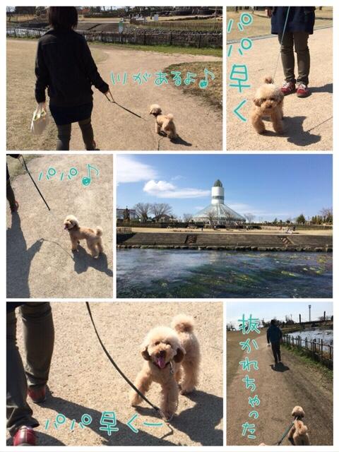 fc2blog_201603282149071d7.jpg