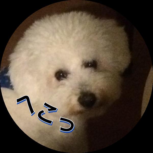 20160322132557cd9.png
