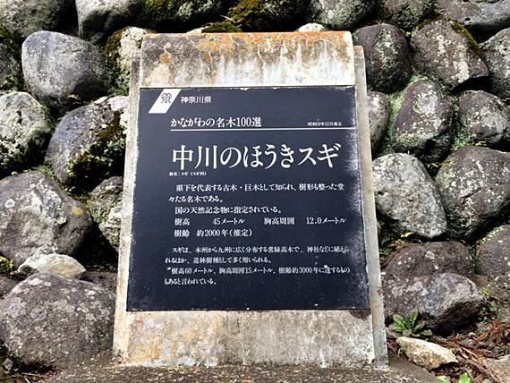 tanzawa-20160320-14s.jpg