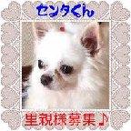 moblog_dc9d3995.jpg