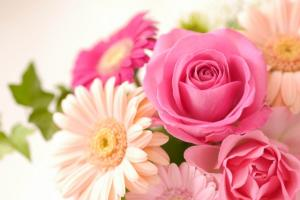 ピンクのバラとガーベラ