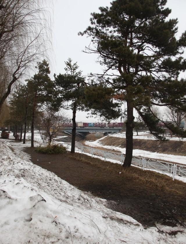 koriyamaIMG_3400-3.jpg