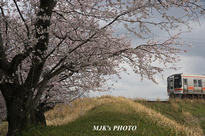 takadabashi6115.jpg