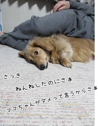 kinako4321.jpg