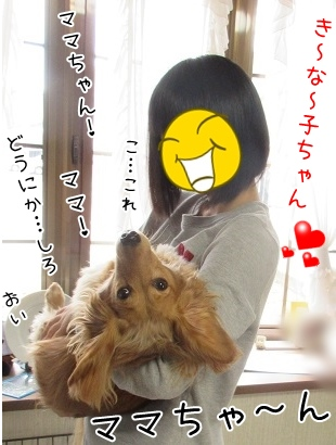 kinako4441.jpg