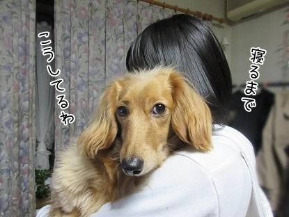 kinako4475.jpg
