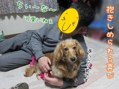 kinako4479.jpg