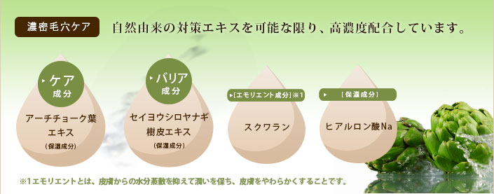seibun_img.jpg