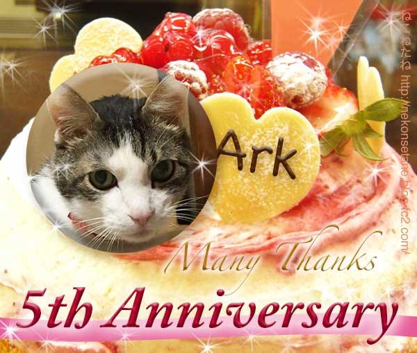 5周年祝いケーキとあーく氏の写真
