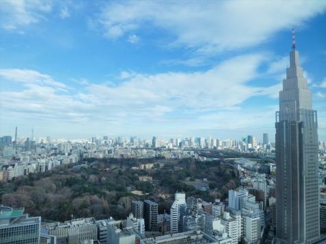 新宿御苑&NTTドコモ代々木ビル【小田急サザンタワー 】