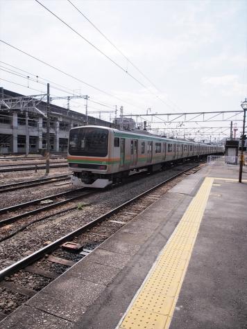 JR東日本 E231系 電車 U503編成